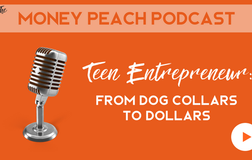 teenage entrepreneur ideas