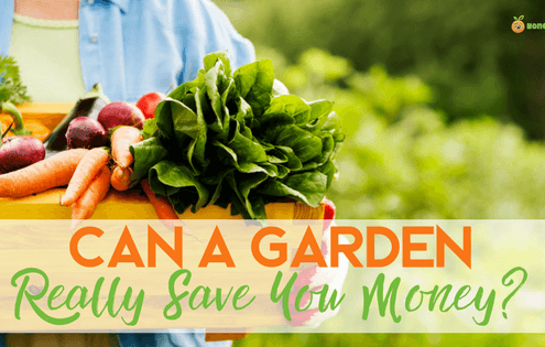 garden help you save money