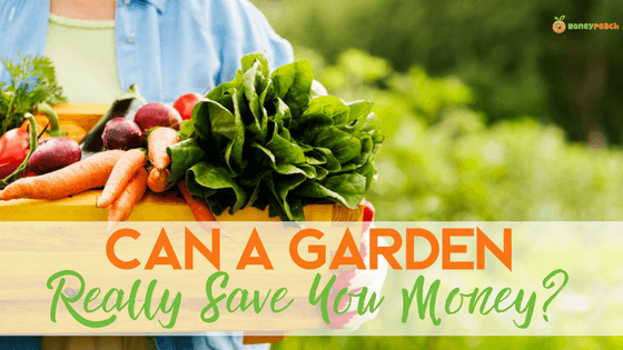 Can a Garden Help You Save Money Money Peach