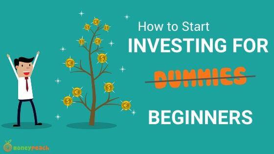 Dupplin investments for dummies investmentgesetz 2021 pdf
